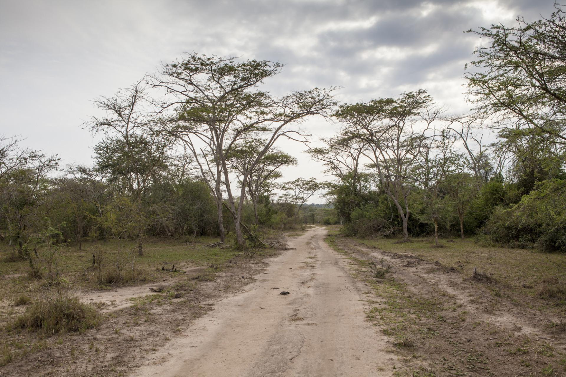 uganda-roadtrip-007