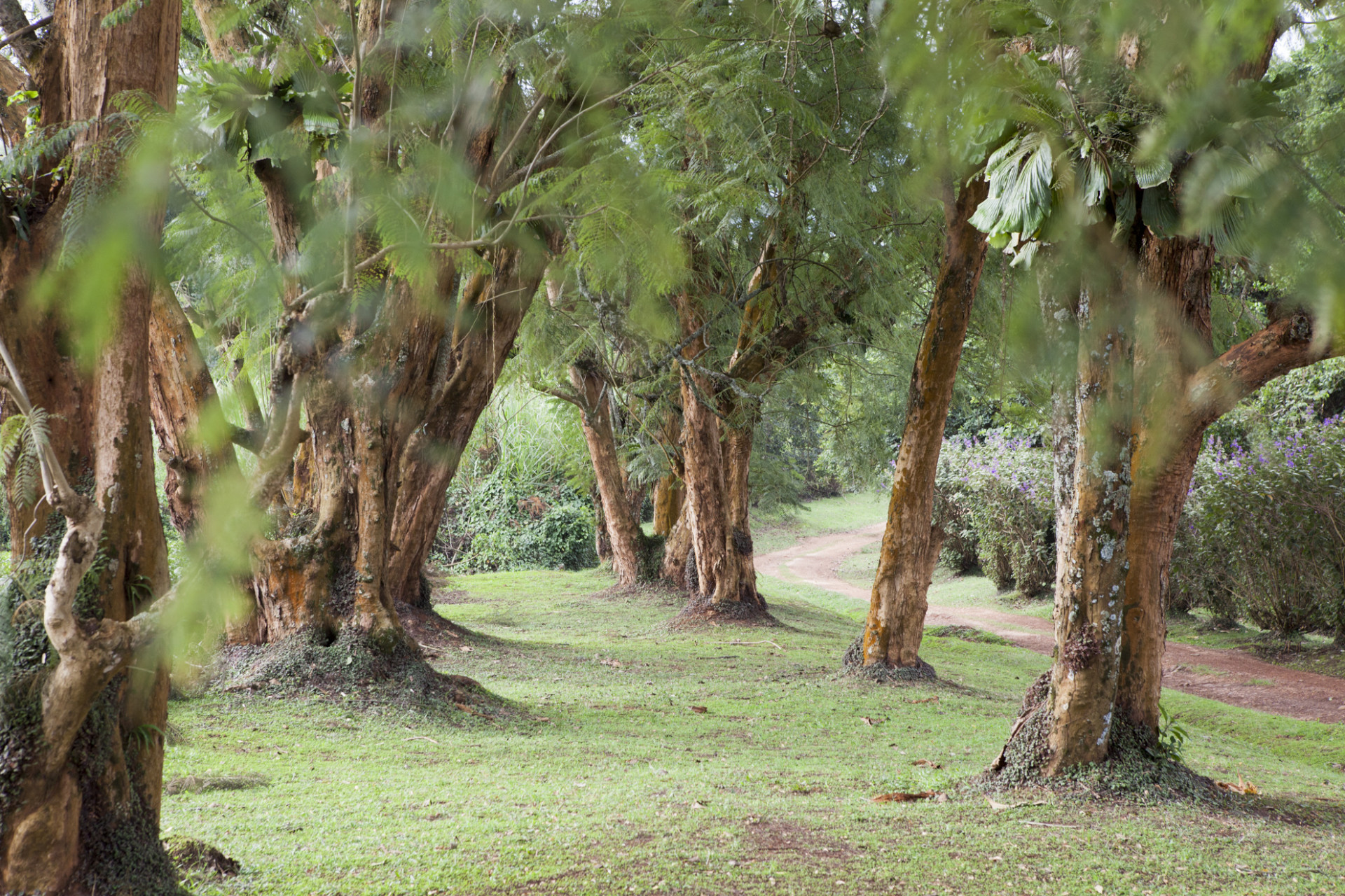 uganda-roadtrip-029