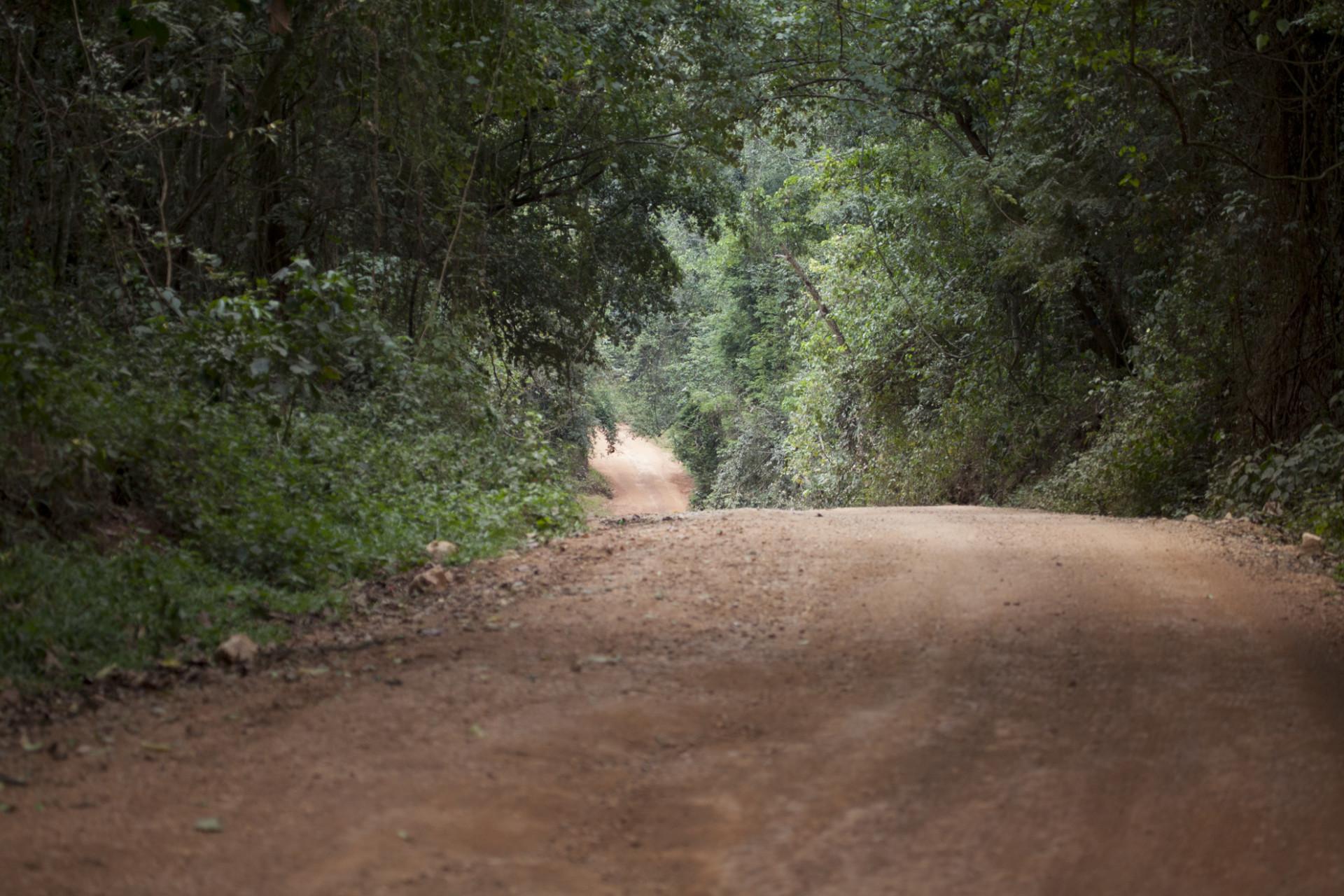 uganda-roadtrip-039