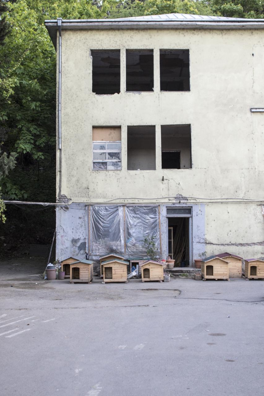 georgia-078